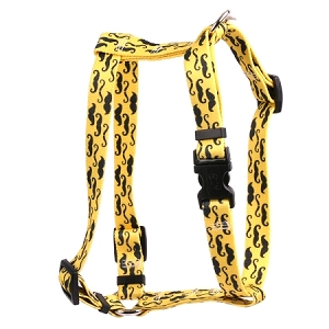 Moustaches On Yellow Roman H Harness