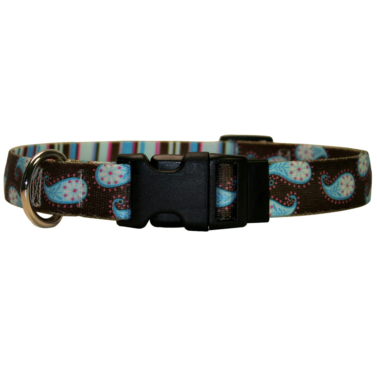 Brown Paisley Standard Collar