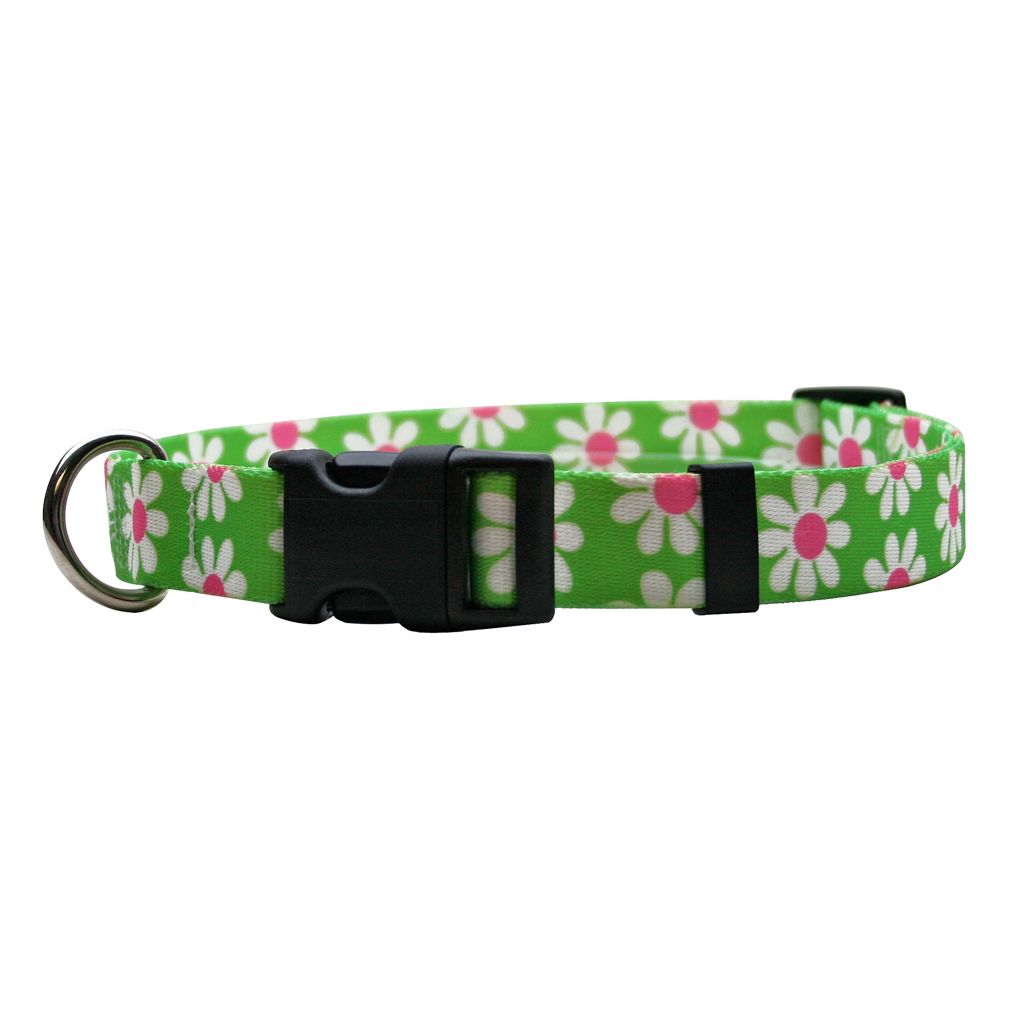 Green Daisy Standard Collar