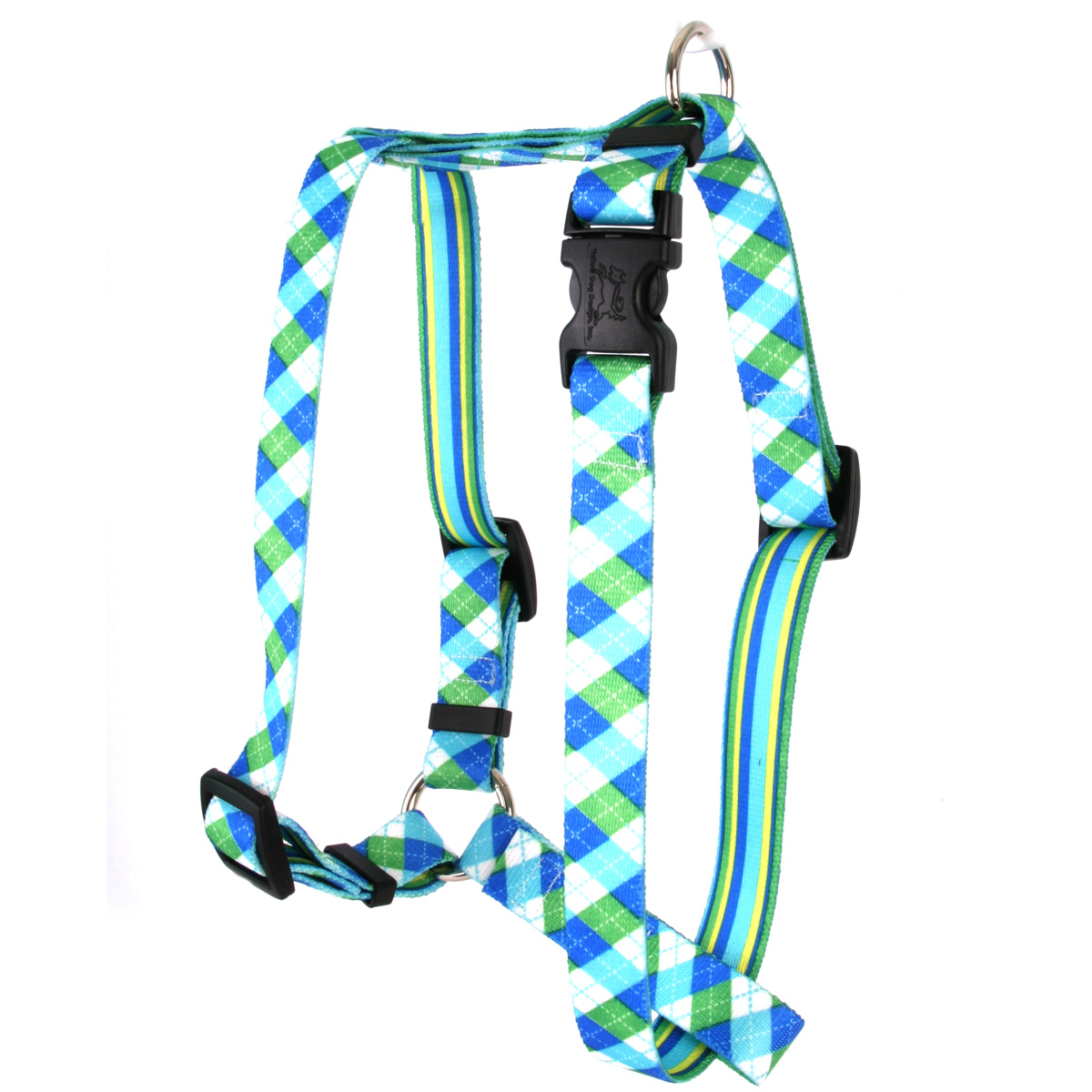 Blue and Green Argyle Roman H Harness