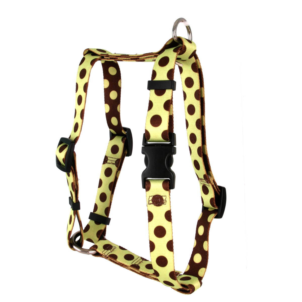 Green and Brown Polka Dot Roman H Harness