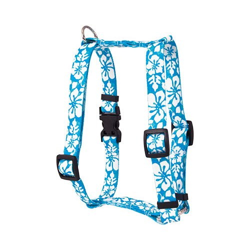 Island Floral Blue Roman H Harness