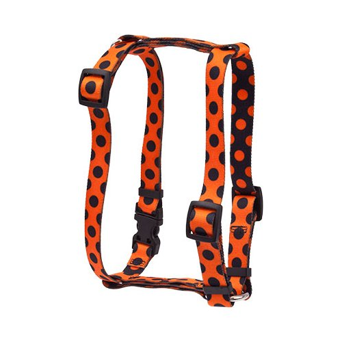 Halloween Polka Dot Roman H Harness