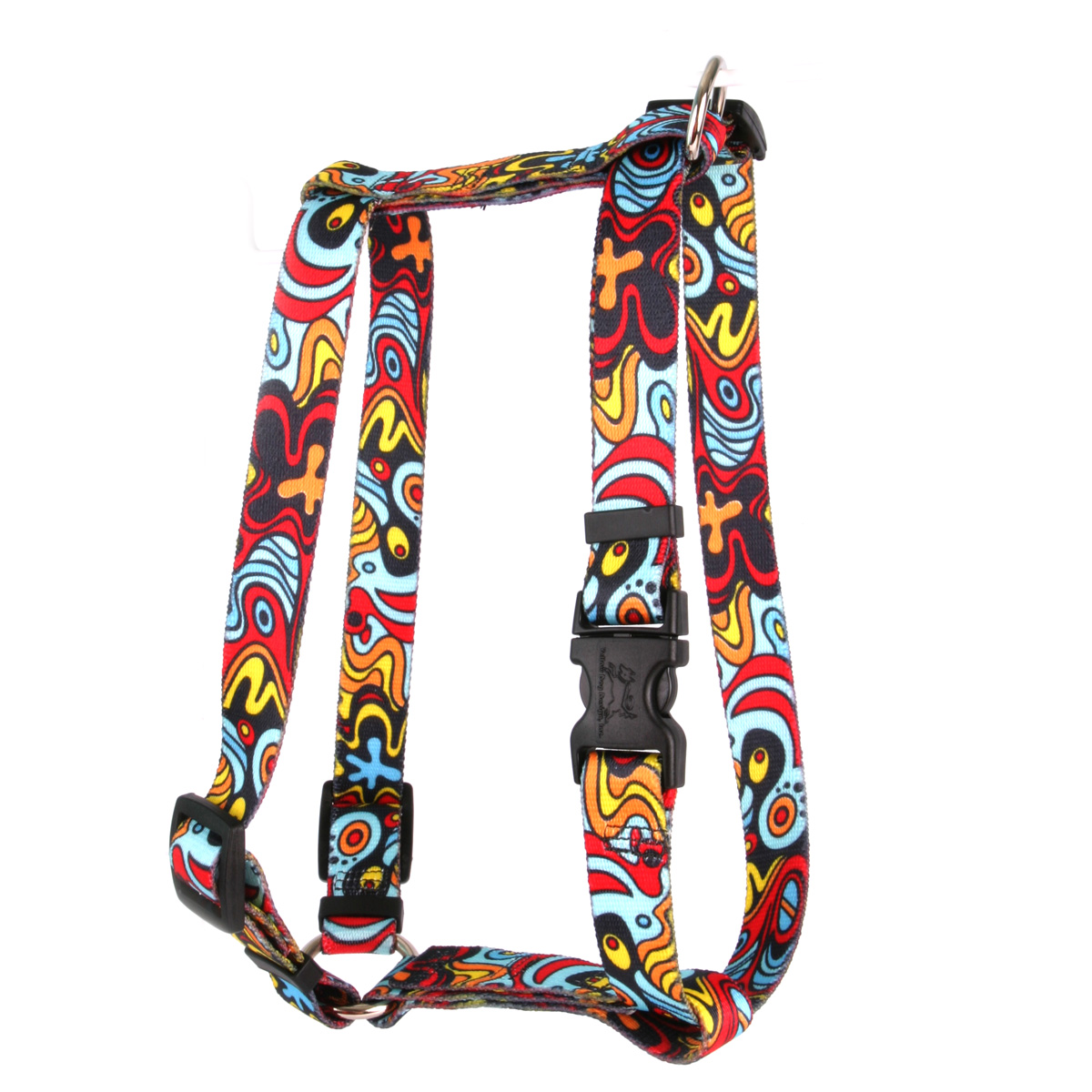 Abstract Roman H Harness
