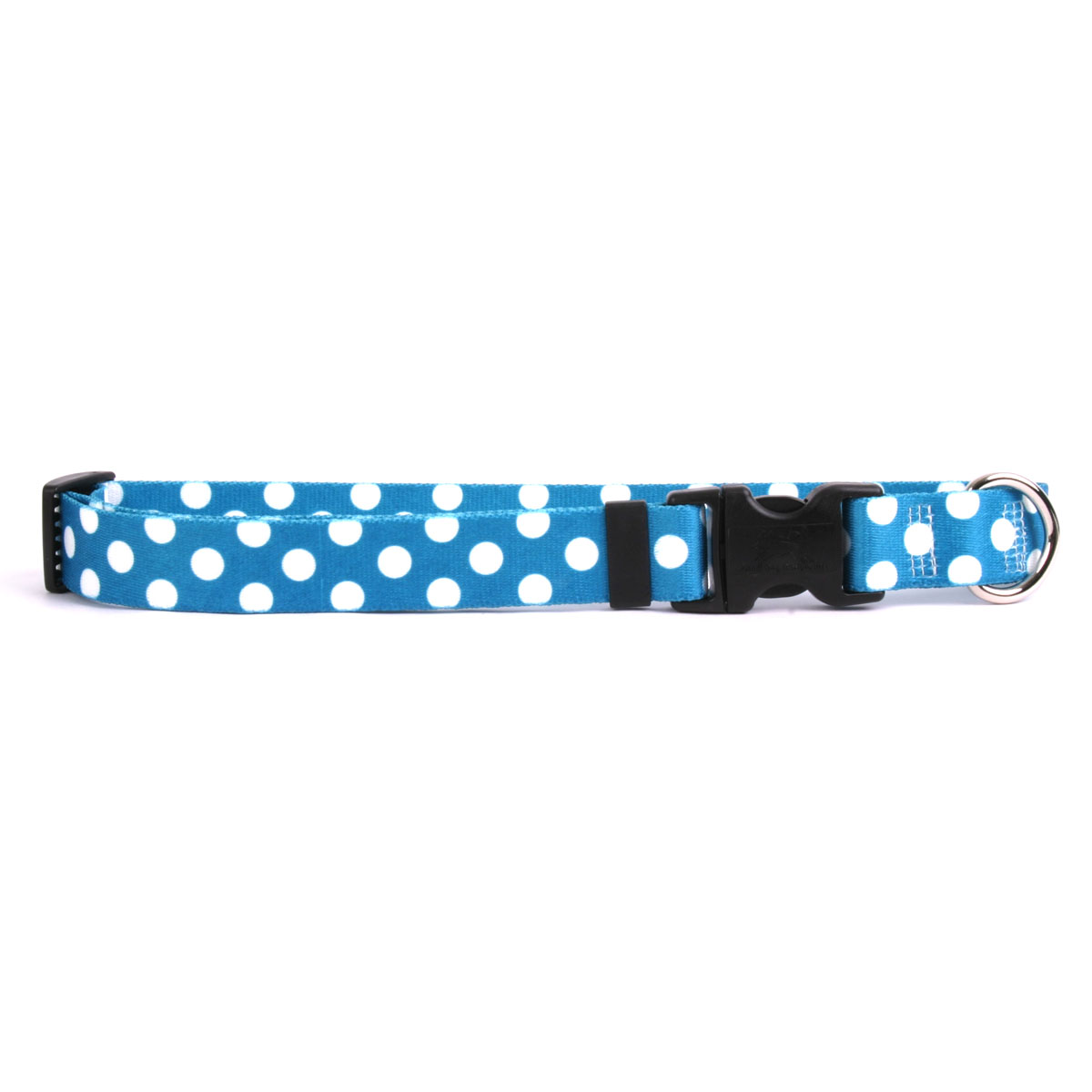 Blueberry Polka Dot Standard Collar