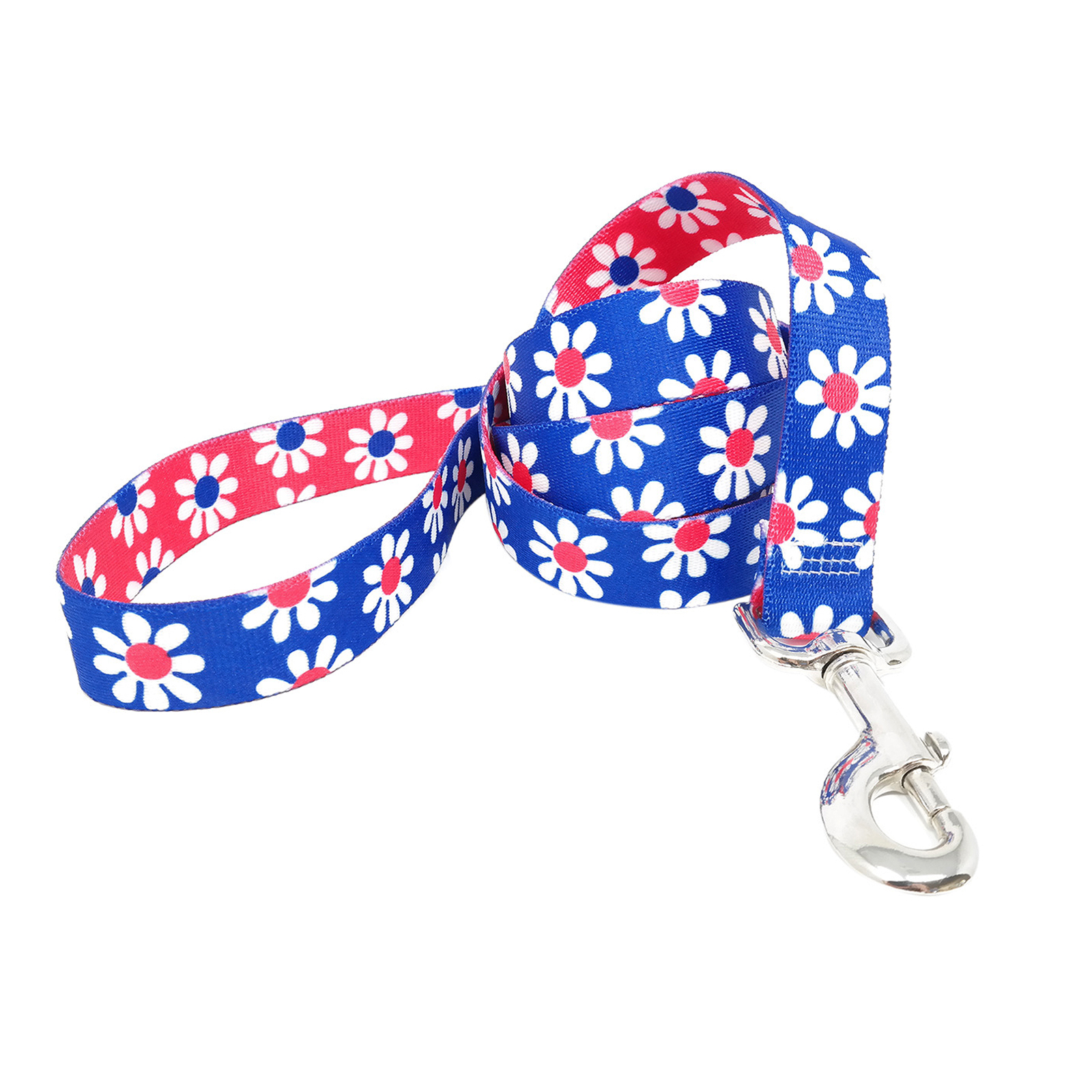 Royal Blue & Magenta Daisy Lead