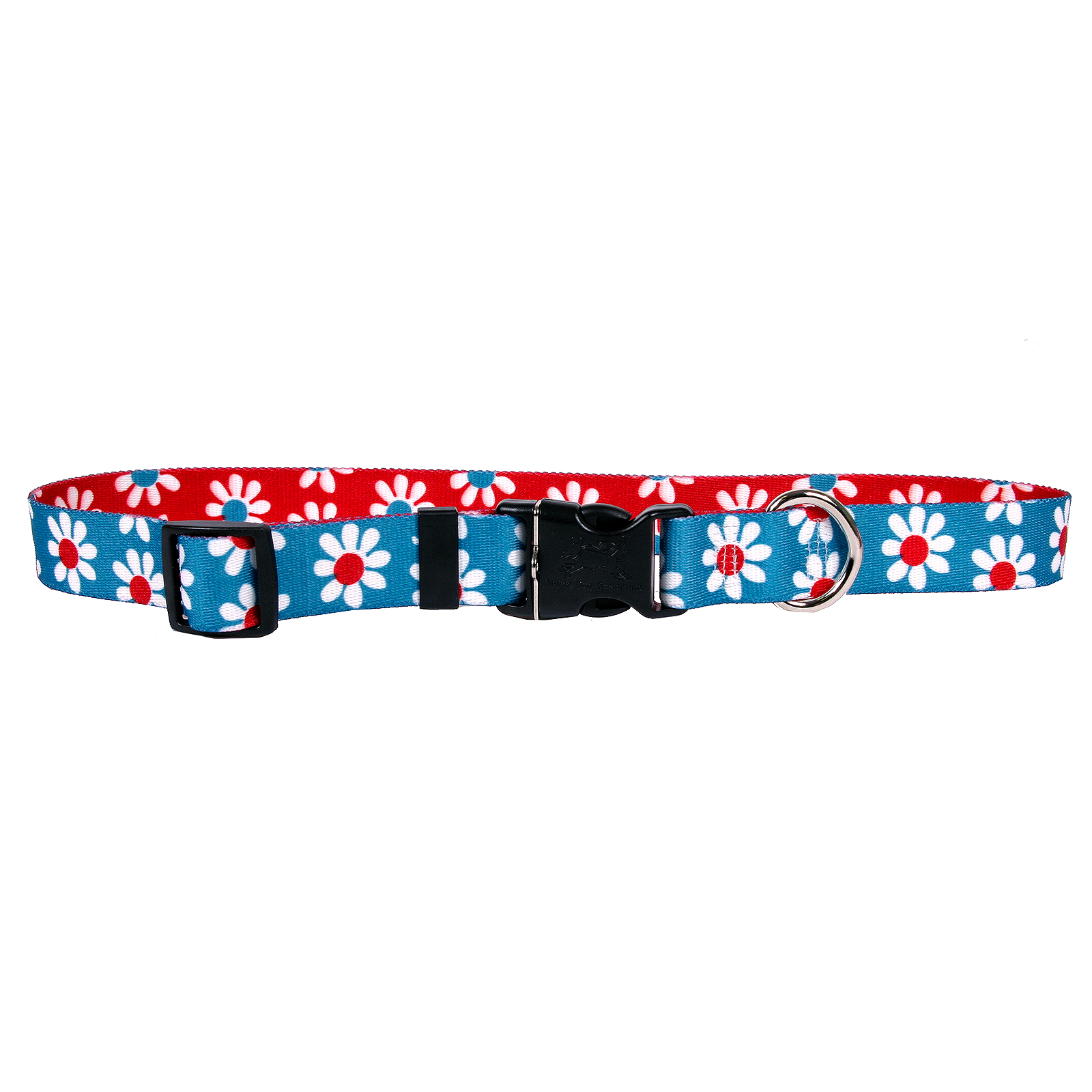Teal & Red Daisy Standard Collar