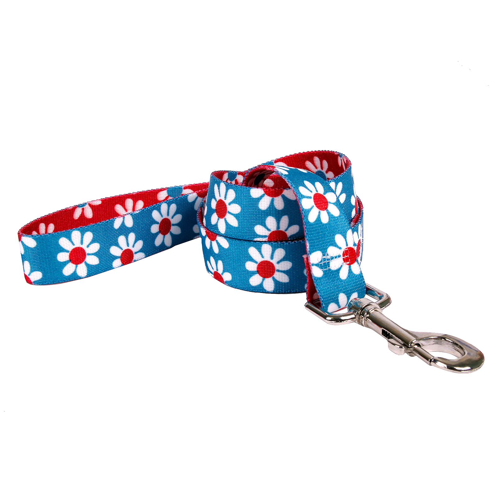 Teal & Red Daisy Lead