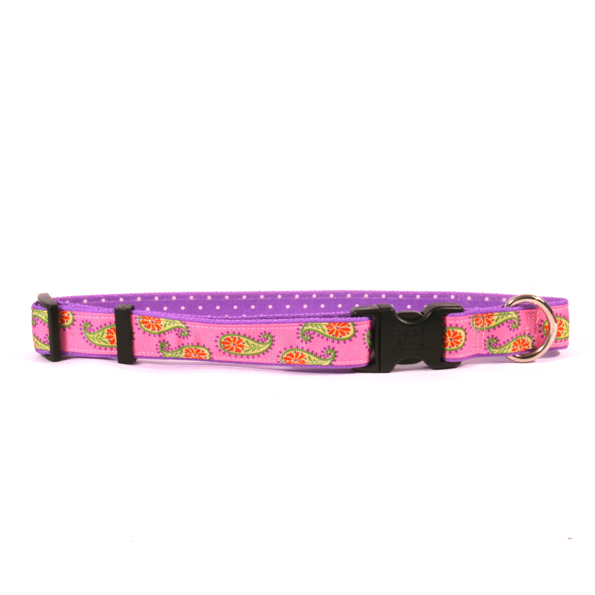 Pink Paisley on Purple Polka Ribbon Collar