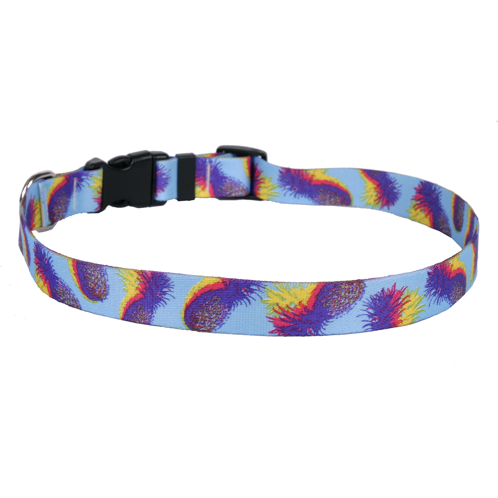 Pineapple Daze Standard Collar