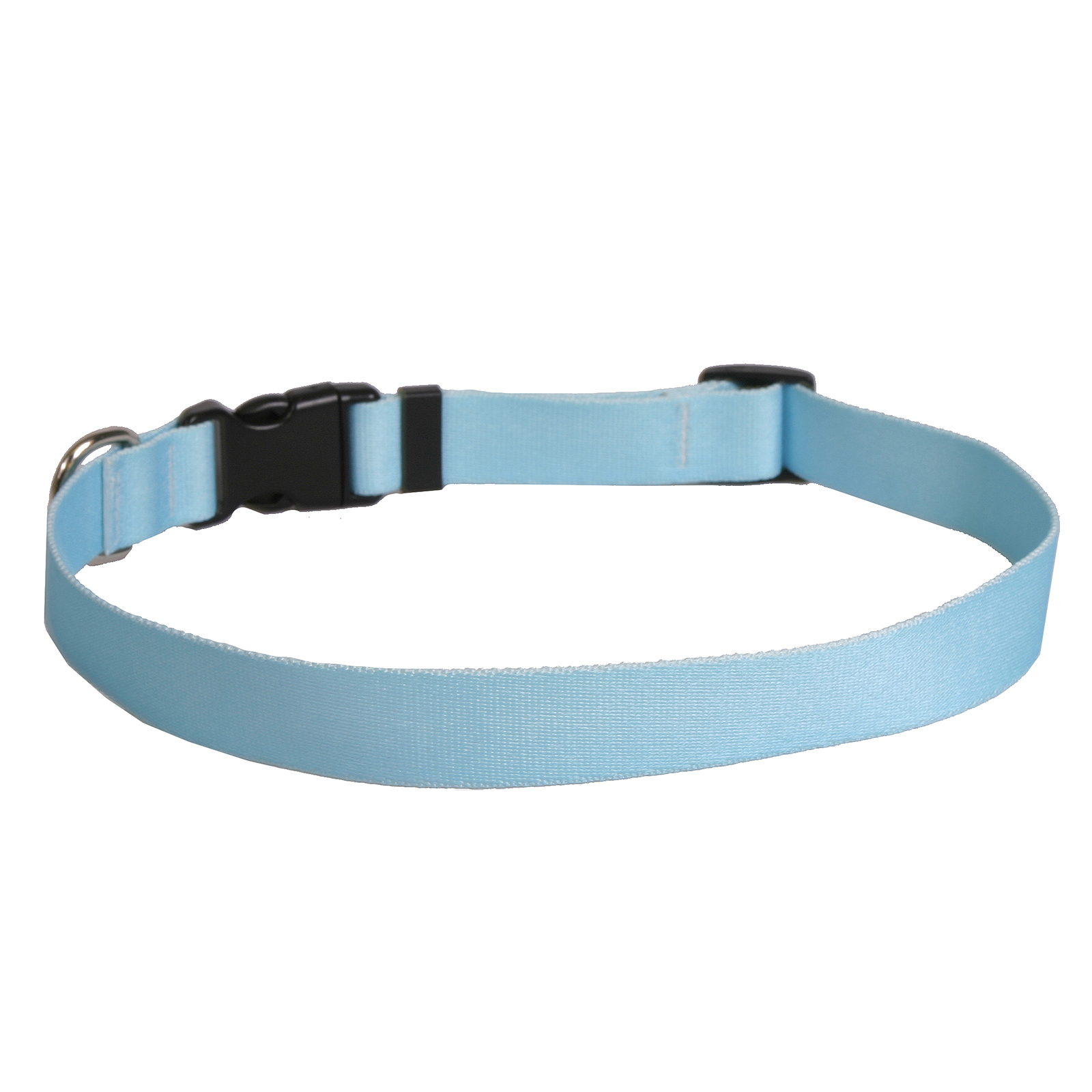 Solid Light Blue Standard Collar
