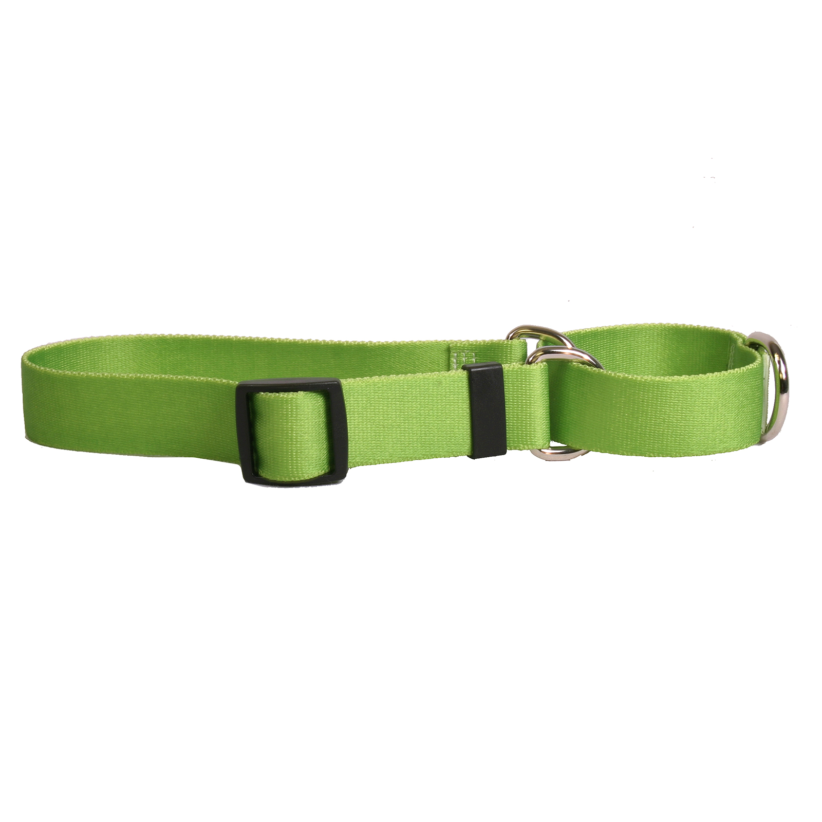 Solid Spring Green Standard Collar