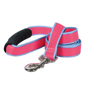 Sterling Stripes Collection Pink and Light Blue EZ-Grip Dog Lead