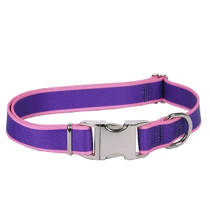 Sterling Stripes Collection Purple and Light Pink Dog Collar
