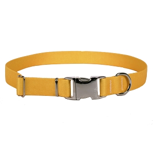 Sterling Solid Collection Goldenrod Dog Collar