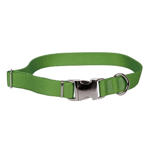 Sterling Solid Collection Kelly Green Dog Collar