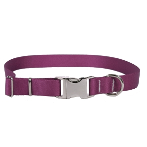 Sterling Solid Collection Plum Dog Collar