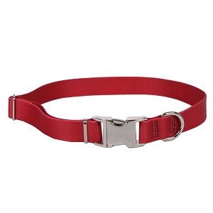 Sterling Solid Collection Red Dog Collar