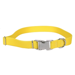 Sterling Solid Collection Yellow Dog Collar