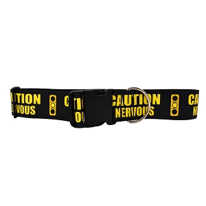 2 Inch Wide Caution Nervous Light Dog Collar