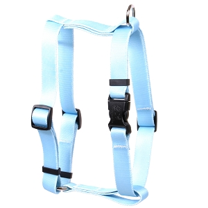 Solid Light Blue Roman H Harness