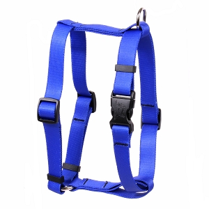 Solid Royal Blue Roman H Harness